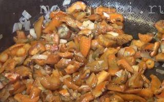 Солёные рыжики на зиму — рецепт приготовления с пошаговыми фото
