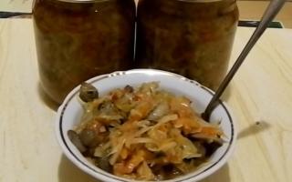 Как приготовить солянку с грибами и капустой: видео, рецепты приготовления вкусных блюд