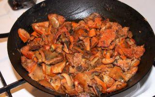 Как приготовить грибы рыжики с мясом: рецепты вкусных блюд