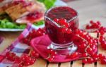 Острый соус из красной смородины на зиму — рецепт на зиму с пошаговыми фото