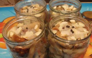Способы приготовления грибов груздей в домашних условиях: рецепты, пошаговые фото и описание технологии