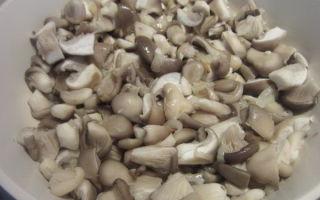 Жареные вешенки со сметаной: фото и пошаговые рецепты приготовления грибов на сковороде