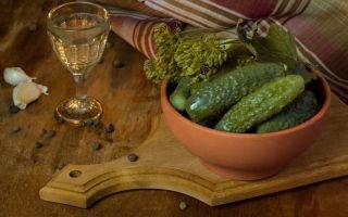 Огурцы с водкой и уксусом на зиму — рецепт с пошаговыми фото