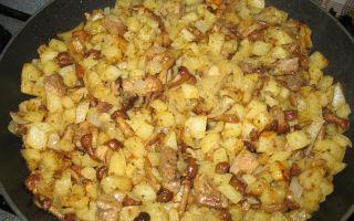 Как приготовить свинину с опятами: рецепты блюд на сковороде, в духовке и мультиварке