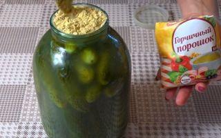 Засолка огурцов с горчицей на зиму — 29 рецептов хрустящих огурцов в банках с пошаговыми фото