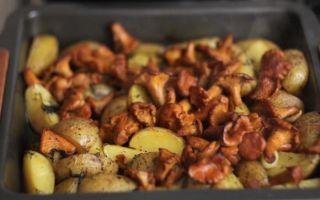 Лисички с картошкой, запеченные в духовке: рецепты, как приготовить грибы с картофелем