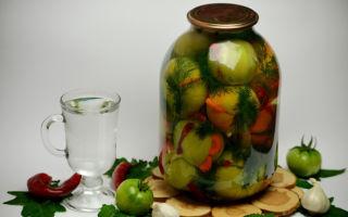 Зеленые помидоры без стерилизации на зиму — 5 простых рецептов с фото пошагово