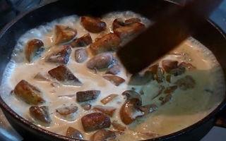 Грибная подлива из шампиньонов: фото и рецепты, как приготовить подливку к любым блюдам