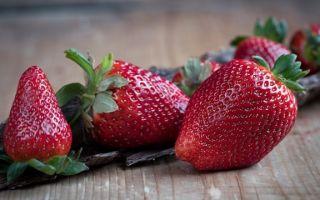 Клубника с сахаром без варки в морозилке на зиму — рецепт с пошаговыми фото