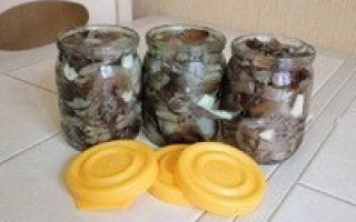 Соленые опята в банках на зиму — рецепт приготовления с пошаговыми фото
