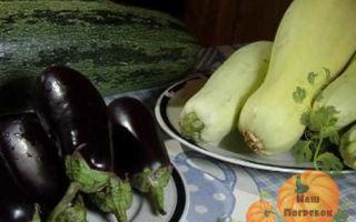 Аджика из кабачков с помидорами пальчики оближешь на зиму — рецепт с пошаговыми фото