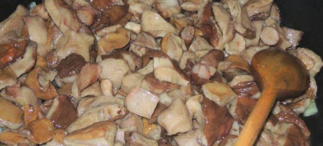 Вкусные блюда из маслят: фото и рецепты, что можно приготовить из этих грибов