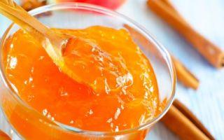 Повидло из яблок на зиму в домашних условиях — 5 простых и вкусных рецептов с фото пошагово