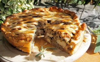 Быстрые пироги с грибами: рецепты с картошкой, курицей, капустой, сыром, мясом и фаршем