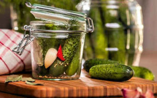 Огурцы с аспирином на зиму — 10 рецептов хрустящих маринованных огурцов в банке