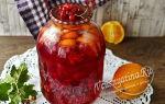 Компот из красной смородины и апельсина на 3-литровую банку на зиму — простой рецепт от автора