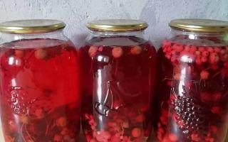 Компот из красной и белой смородины на 3-литровую банку на зиму — простой пошаговый рецепт