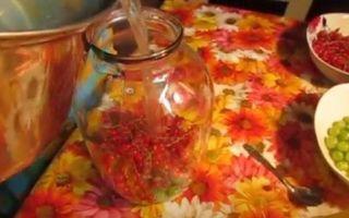 Компот из красной смородины и крыжовника на 3-х литровую банку на зиму — простой рецепт от автора