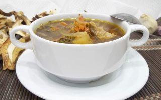 Суп из белых грибов с картошкой: рецепты приготовления из сухих и свежих