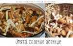 Опята с кабачками: рецепты на зиму и грибные блюда для быстрого употребления