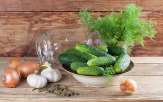 Маринованные огурцы на 1 литровую банку на зиму — 107 рецептов хрустящих огурцов