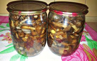 Стерилизованные маринованные опята: рецепты грибных заготовок