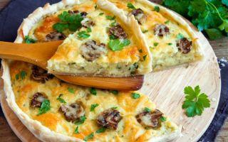 Куриное филе с грибами в соусе: рецепты вкусных блюд