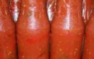 Горький перец в томатном соке на зиму — рецепт приготовления с пошаговыми фото