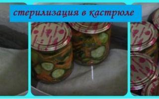 Огурцы на зиму — 5 самых вкусных рецептов с фото пошагово