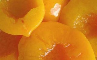 Абрикосы на зиму — 181 рецепт лучших заготовок с пошаговыми фото