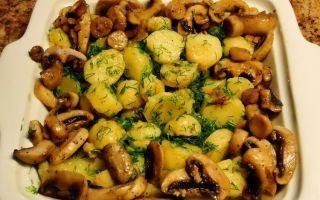 Картошка с шампиньонами, жареная на сковороде: рецепты, как приготовить вкусные грибные блюда