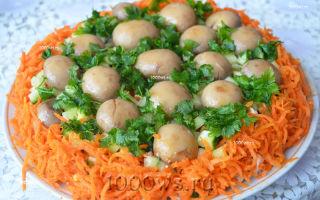Салат «грибная поляна» с шампиньонами: фото, рецепты приготовления с видео
