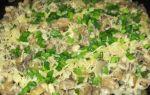 Вешенки с плавленым и твердым сыром: рецепты грибных супов и салатов с вешенками