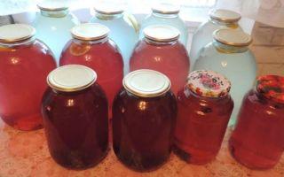 Березовый сок с лимонной кислотой на 3-х литровую банку на зиму — рецепт в домашних условиях в фото пошагово