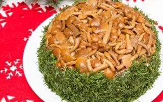 Салат «грибная поляна» с опятами: фото, рецепты приготовления вкусных блюд из грибов