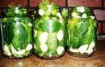 Огурцы холодным способом в 3-х литровых банках на зиму — 11 рецептов хрустящих соленых огурцов с пошаговыми фото
