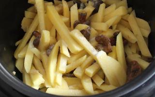 Рецепты, как приготовить грибы рыжики с картошкой в мультиварке, духовке и на сковороде
