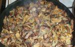 Как приготовить печень с грибами шампиньонами: рецепты салатов и других грибных блюд