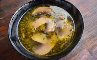 Грибные супы из шампиньонов на курином, говяжьем, овощном бульоне: рецепты первых блюд