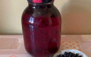 Черничный компот на 3 литра на зиму в банках — рецепт с пошаговыми фото