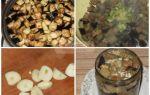 Баклажаны как грибы на зиму — 39 рецептов лучших заготовок с пошаговыми фото