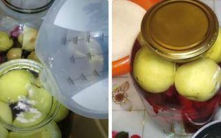 Компот из вишни с косточками без стерилизации на 1 литр на зиму — простой рецепт от автора