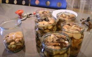 Как замариновать подосиновики на зиму — рецепт с пошаговыми фото