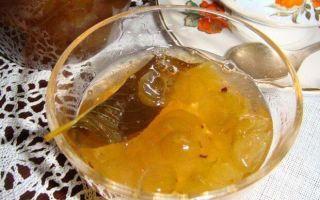 Варенье из крыжовника с лимоном без варки на зиму — простой пошаговый рецепт