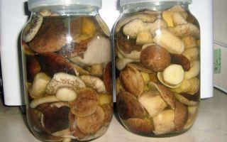 Как солить и мариновать сыроежки на зиму горячим способом: рецепты соления и маринования грибов