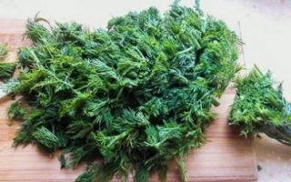 Зеленые помидоры, фаршированные чесноком на зиму — рецепт с пошаговыми фото