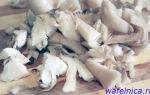 Как чистить грибы вешенки: фото, видео и советы по очистке грибов
