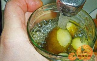 Огурцы без уксуса на зиму — 37 рецептов хрустящих маринованных огурцов в банках