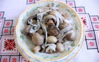Как мариновать ножки грибов: рецепты блюд в домашних условиях