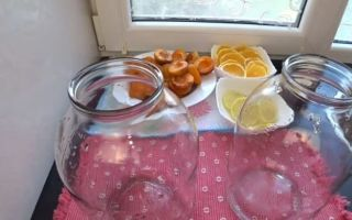 Домашняя фанта из абрикосов на зиму — рецепт с пошаговыми фото